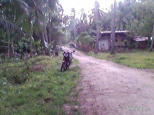 Picture of Farm lot 4, 500sq. m clean titled at mambago- babak samal island